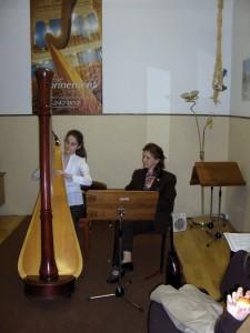 Workshop Budapest 2009